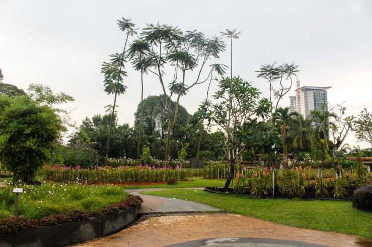 Kuala Lumpur day 1-16